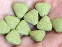 この小さな粒の中にモロヘイヤの栄養素がびっしり詰まっている。
