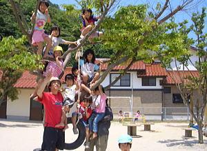 木登り遊び