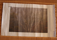 新しい試み、出雲和紙に写真をプリント 和紙独特の風合いと立体感が面白い